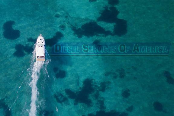 Marine Generator Service